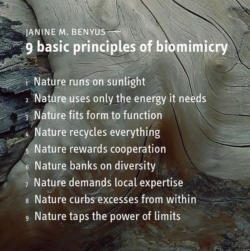nine_basic_principles